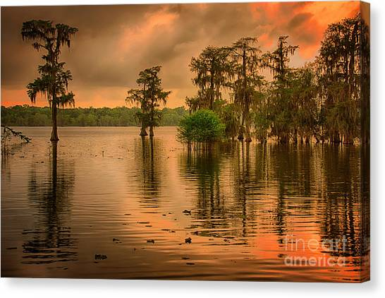 Cottonmouths Canvas Print - Lake Martin Sunset by Priscilla Burgers