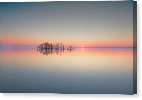 Cypress Canvas Print - Lake Mattamuskeet Memory by Liyun Yu