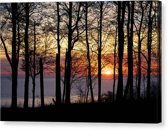 Lake Michigan Sunset With Silhouetted Trees Canvas Print