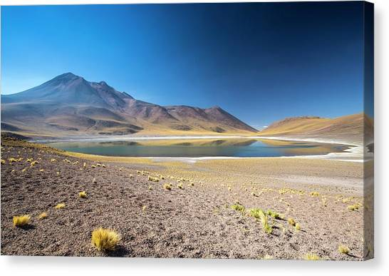 Atacama Desert Canvas Print - Lake Miscanti by Peter J. Raymond