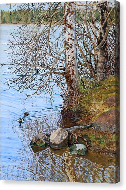Lake Padden - View Near Scott Memorial Bench Canvas Print