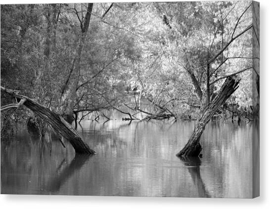 Lake Reflections Canvas Print by Misty Stach