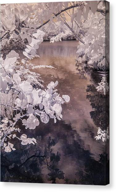 Lake Shadows Canvas Print