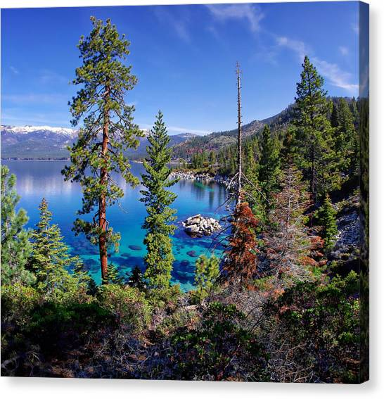 Lake Tahoe Eastern Shore Canvas Print