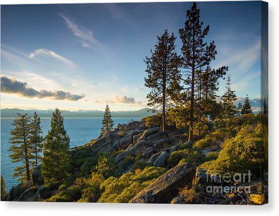 Lake Tahoe From Chimney Beach Trail Canvas Print
