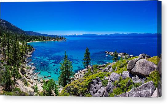 Pine Trees Canvas Print - Lake Tahoe Summerscape by Scott McGuire