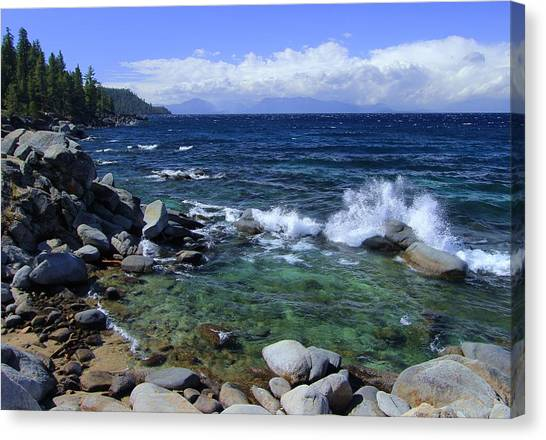 Canvas Print featuring the photograph Lake Tahoe Wild  by Sean Sarsfield