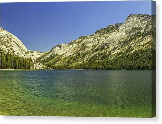 Lake Tenaya-yosemite Series 12 Canvas Print by David Allen Pierson