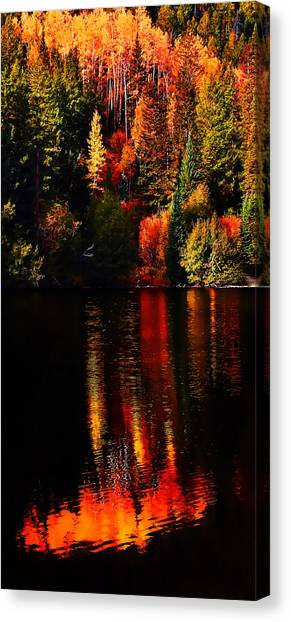 Lakeshore Reflections Canvas Print by Terril Heilman