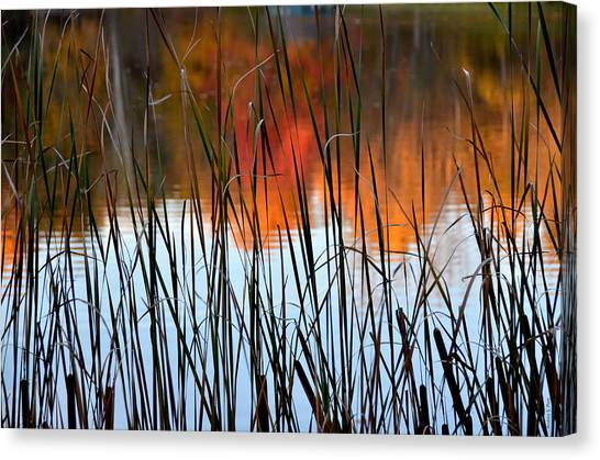 Lakeside Tales Canvas Print