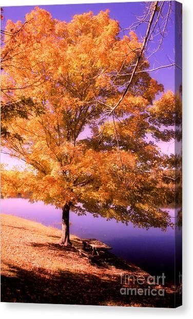 Lakeside Tree Canvas Print