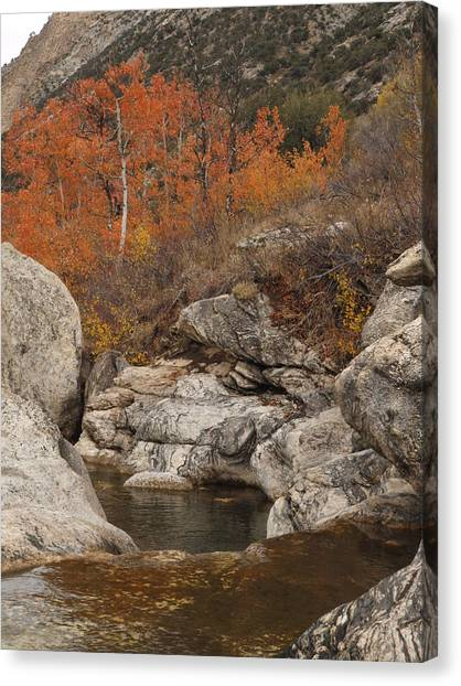 Lamoille Canyon Colors Canvas Print