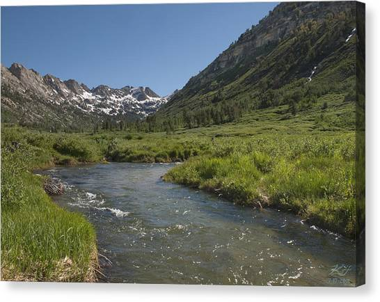 Lamoille Creek Canvas Print