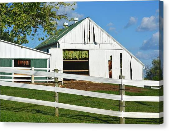 Lancaster County Tobacco Barn Canvas Print