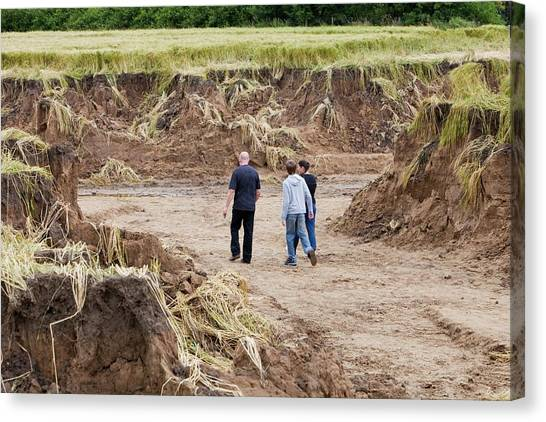 Flooding Canvas Print - Land Eroded By Flooding by Ashley Cooper