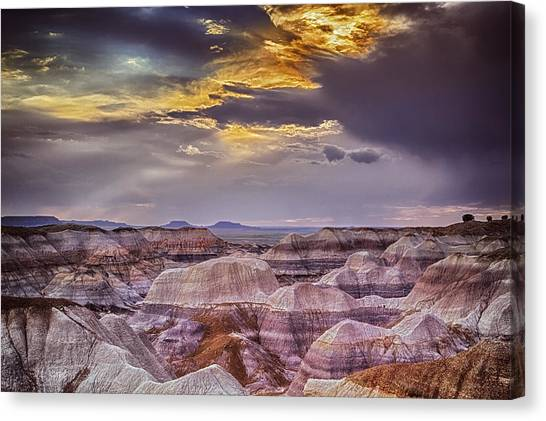 Petrified Forest Canvas Print - Land Of Constant Change by Medicine Tree Studios