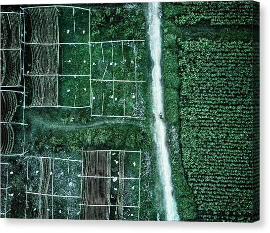 Farm Landscape Canvas Print - Land Of Idyllic Beauty by Zhou Chengzhou