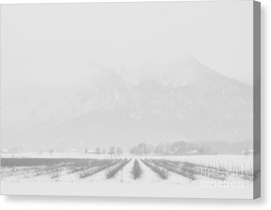 Land Of Snow Canvas Print