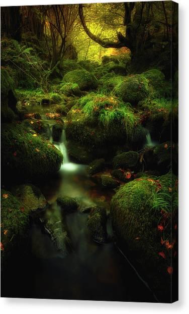 Flowing Canvas Print - Land Of Xanes by Glendor Diaz Suarez