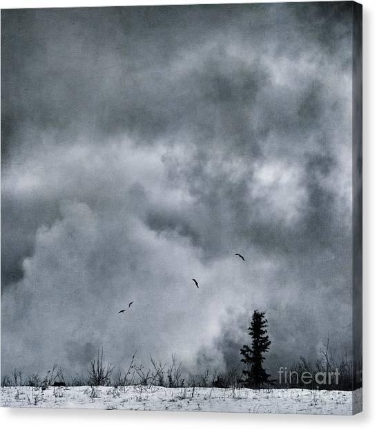 Yukon Canvas Print - Land Shapes 5 by Priska Wettstein