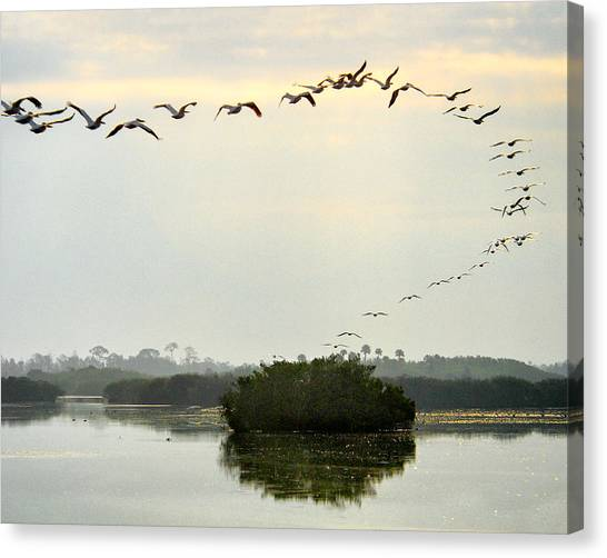 Landing Pattern Canvas Print