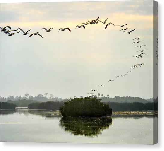 Landing Pattern Canvas Print