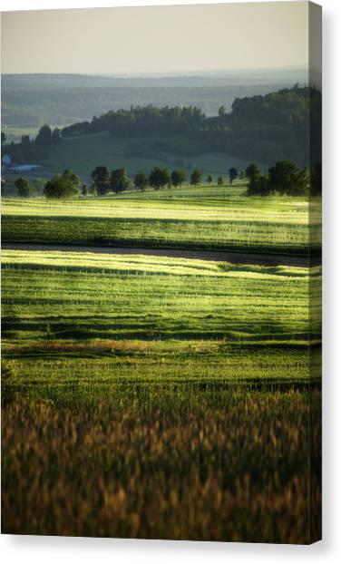 Landscape Canvas Print by Anna Gora