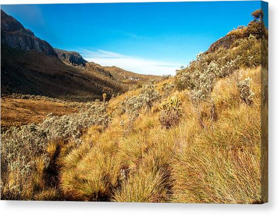 Nevado Del Ruiz Canvas Print - Landscape At Nevado Del Ruiz by Jess Kraft