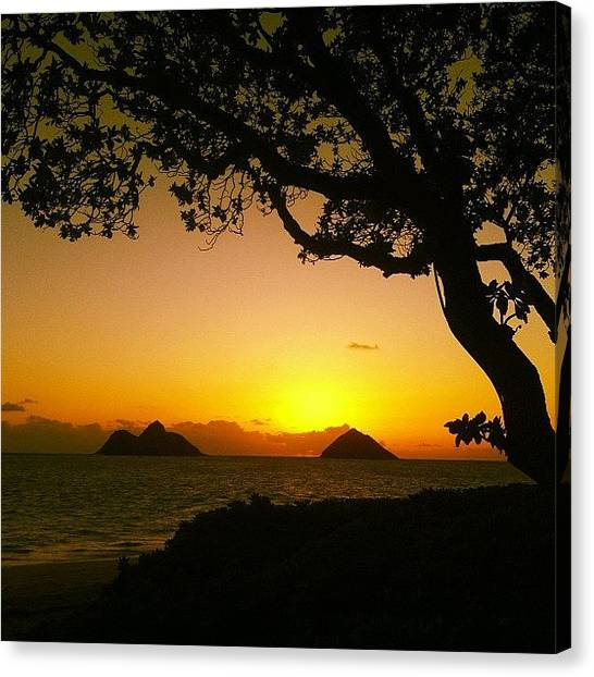 Hawaii Canvas Print - Lanikai Sunrise #luckywelivehawaii by Brian Governale