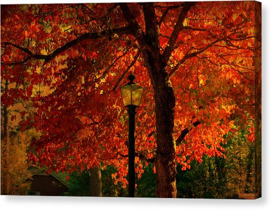 Autumn Scene Canvas Print - Lantern In Autumn by Susanne Van Hulst