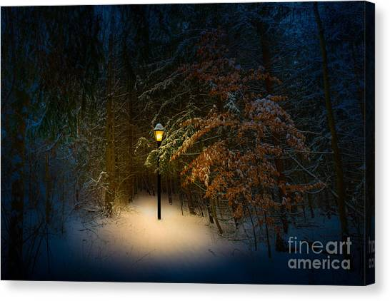 Lantern In The Wood Canvas Print