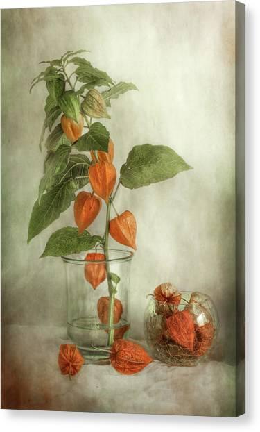 China Canvas Print - Lanterns by Mandy Disher
