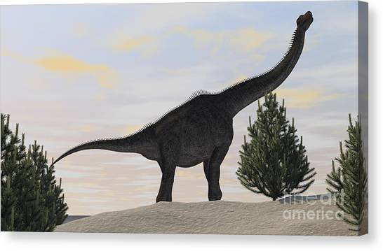 Brachiosaurus Canvas Print - Large Brachiosaurus Amongst Pine Trees by Kostyantyn Ivanyshen