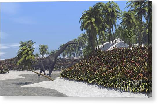 Brachiosaurus Canvas Print - Large Brachiosaurus Grazing On Tropical by Kostyantyn Ivanyshen