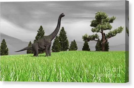 Brachiosaurus Canvas Print - Large Brachiosaurus In An Open Field by Kostyantyn Ivanyshen