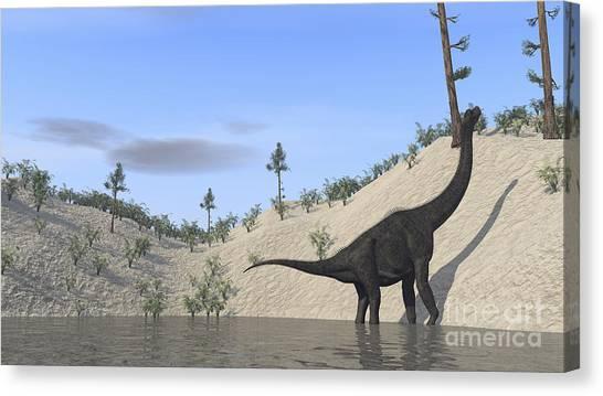 Brachiosaurus Canvas Print - Large Brachiosaurus Standing In A Lake by Kostyantyn Ivanyshen