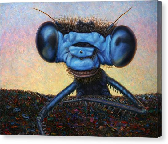 Weird Canvas Print - Large Damselfly by James W Johnson