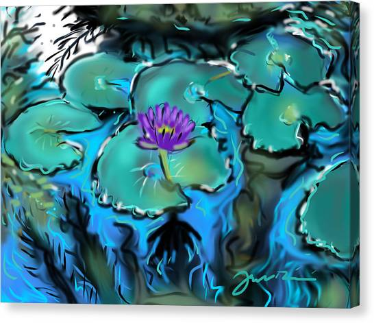 Largo Waterlilies Canvas Print