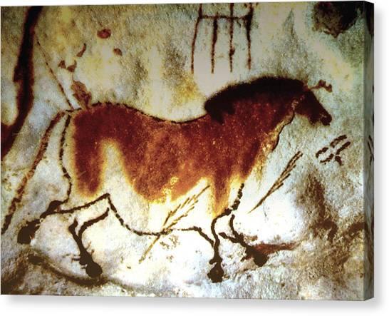 Lascaux Horse - Version 2 Canvas Print