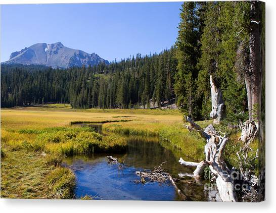Lassen Mountain Stream Canvas Print
