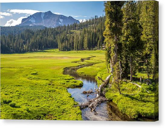 Bumpass Canvas Print - Lassen Volcanic Meadow by Pierre Leclerc Photography