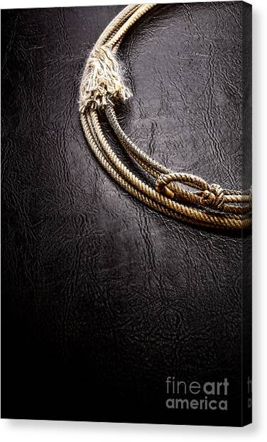 Lassos Canvas Print - Lasso On Leather by Olivier Le Queinec