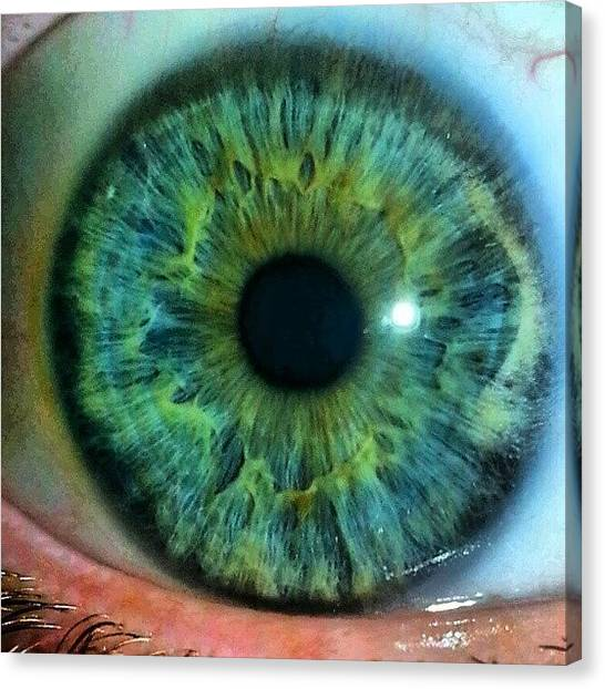 Genetics Canvas Print - Last Eye Picture, I Promise. #eyes by Chad Christensen
