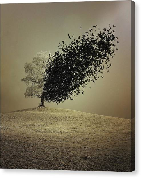 Conceptual Art Canvas Print - Last Hope by Radin Badrnia