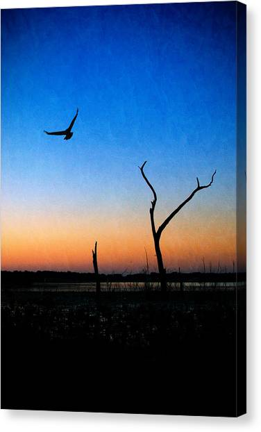 Canvas Print featuring the photograph Last Light by Beverly Stapleton