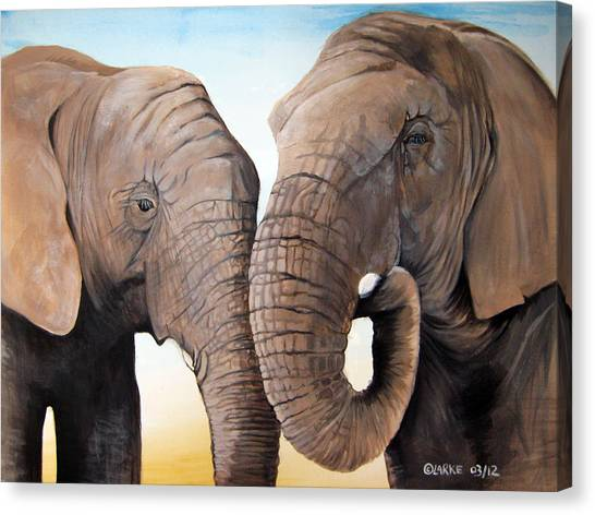 Latabe And Five Canvas Print by Stacey Clarke