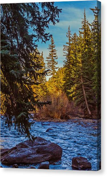 Late Afternoon Along The South Platte Canvas Print by Mike Schaffner