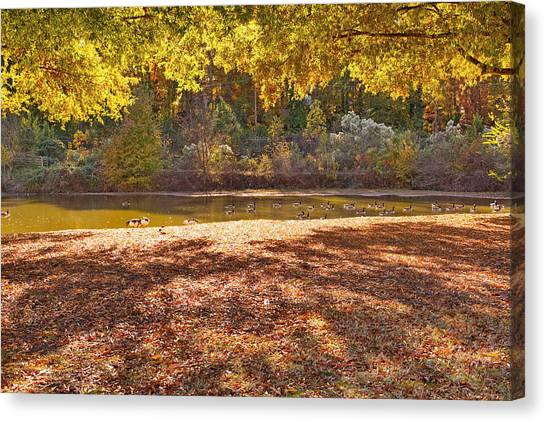 Late Afternoon Autumn Sunshine At The Lake Canvas Print