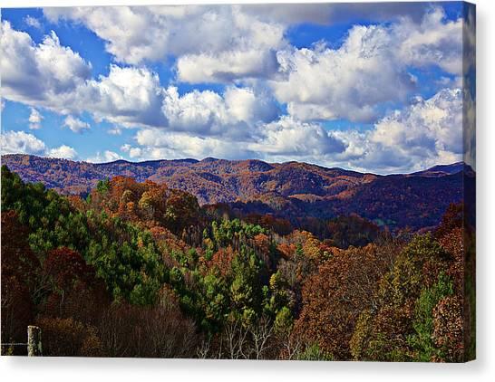 Late Autumn Beauty Canvas Print