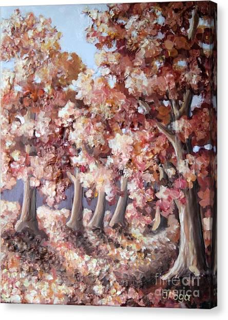Late Autumn Maples Canvas Print